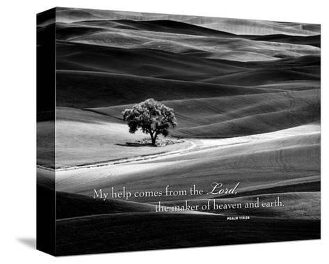 My Help Comes-Dennis Frates-Stretched Canvas Print