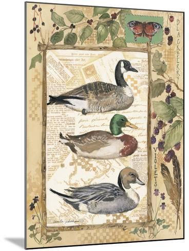 Three Ducks-Anita Phillips-Mounted Art Print
