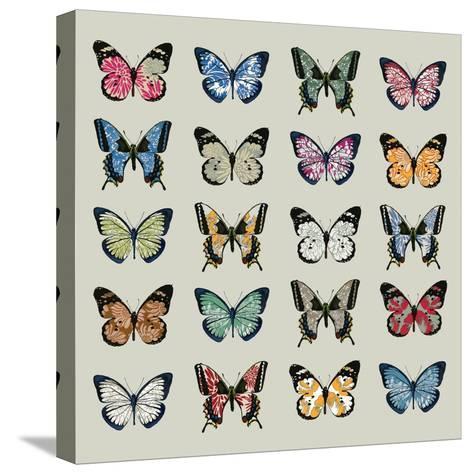 Papillon, 2008-Sarah Hough-Stretched Canvas Print