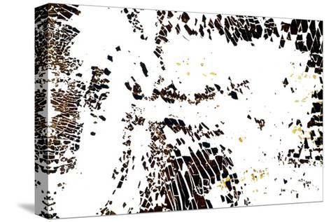 NA_7 [Take Flight], 2002-Kika Pierides-Stretched Canvas Print