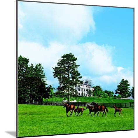Architectural Digest-H. Durston Saylor-Mounted Premium Photographic Print