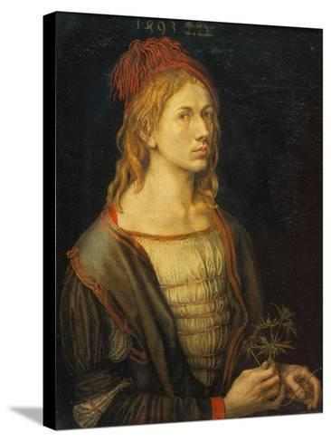 Self Portrait with a Thistle, 1493-Albrecht D?rer-Stretched Canvas Print