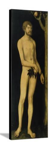 Adam, 1531-Lucas Cranach the Elder-Stretched Canvas Print