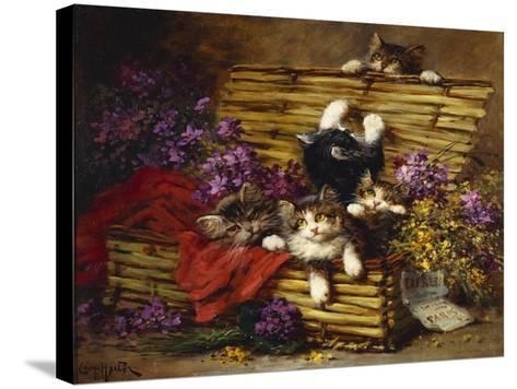 Kittens at Play-Léon Charles Huber-Stretched Canvas Print