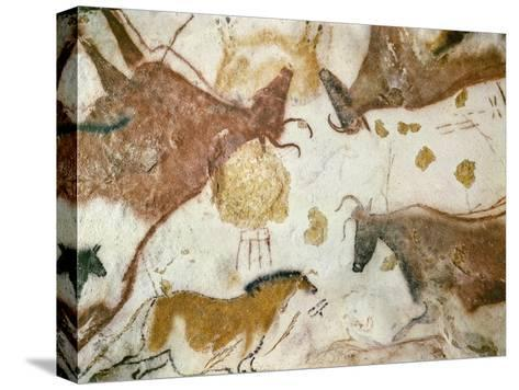 Cave of Lascaux, Ceiling of the Diverticulum: a Horse and Three Cows, C. 17,000 BC--Stretched Canvas Print
