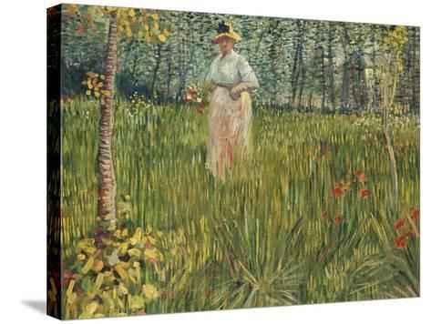 Woman in a Garden (Femme Dans Un Jardin), 1887-Vincent van Gogh-Stretched Canvas Print
