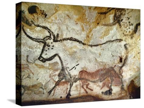 Cave of Lascaux, Great Hall, Left Wall: Second Bull, Below: Kneeling Red Cow, C. 17,000 BC--Stretched Canvas Print