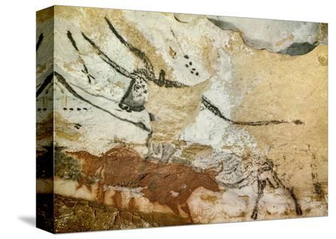 Caves of Lascaux, Fourth Bull, Below: Red Cow with Calf, Great Hall, Right Wall, C. 17,000 BC--Stretched Canvas Print