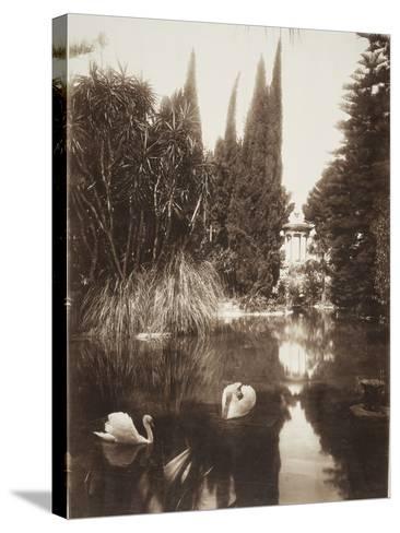 Palermo: in the Park of the Villa Tasca, 1895-Wilhelm Von Gloeden-Stretched Canvas Print