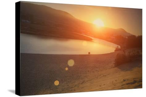 Morning Sun at Salmon Creek, Sonoma Coast California-Vincent James-Stretched Canvas Print