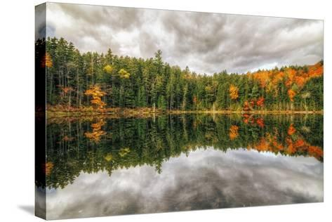 Pond Reflection, White Mountains, New Hampshire-Vincent James-Stretched Canvas Print