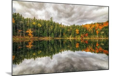Pond Reflection, White Mountains, New Hampshire-Vincent James-Mounted Photographic Print