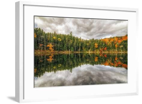 Pond Reflection, White Mountains, New Hampshire-Vincent James-Framed Art Print