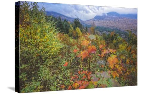 Autumn Viewpoint, White Mountains, New Hampshire-Vincent James-Stretched Canvas Print
