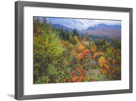 Autumn Viewpoint, White Mountains, New Hampshire-Vincent James-Framed Art Print
