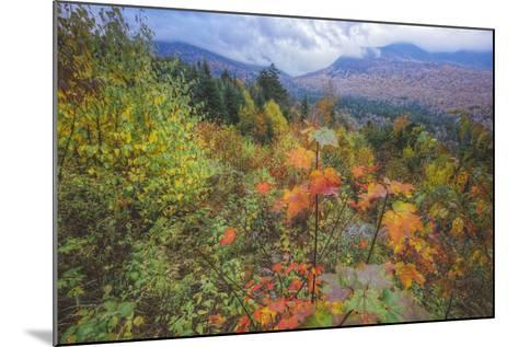 Autumn Viewpoint, White Mountains, New Hampshire-Vincent James-Mounted Photographic Print
