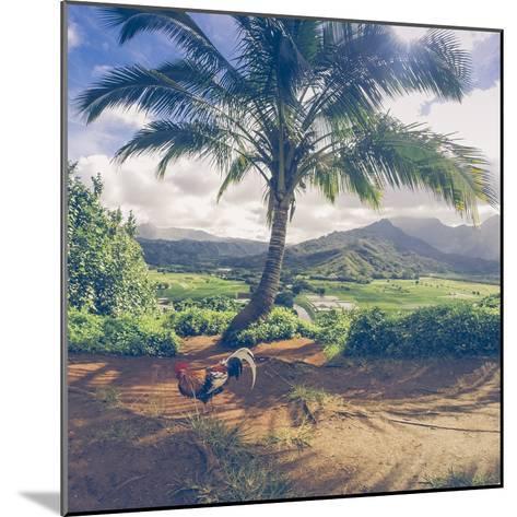 Hanalei Chicken Landscape, Kauai Hawaii-Vincent James-Mounted Photographic Print