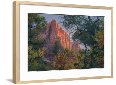 Watchman and Fall Frame, Zion Southwest Utah-Vincent James-Framed Art Print
