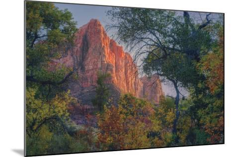 Watchman and Fall Frame, Zion Southwest Utah-Vincent James-Mounted Photographic Print