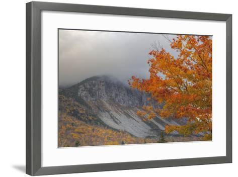 Foggy Autumn Design at White Mountain, New Hampshire-Vincent James-Framed Art Print