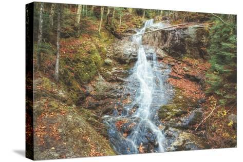 Beaver Creek Cascades in Autumn, New Hampshire-Vincent James-Stretched Canvas Print