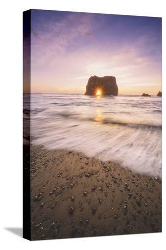 Sun Star at Elephant Rock, Fort Bragg Mendocino-Vincent James-Stretched Canvas Print