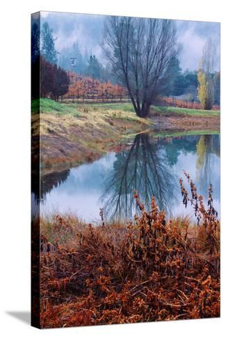 Autumn Pond Reflections, Calistoga Napa Valley-Vincent James-Stretched Canvas Print