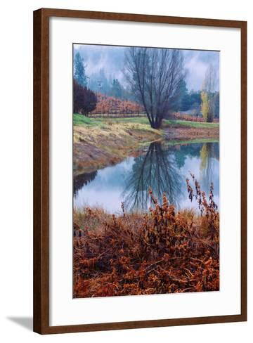 Autumn Pond Reflections, Calistoga Napa Valley-Vincent James-Framed Art Print