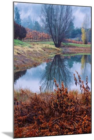 Autumn Pond Reflections, Calistoga Napa Valley-Vincent James-Mounted Photographic Print