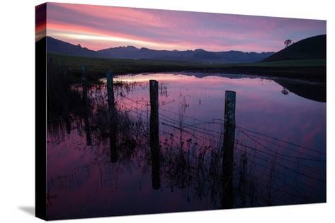 Pre Dawn in the Petaluma Hills, Sonoma County-Vincent James-Stretched Canvas Print