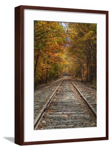 Autumn Tracks, New Hampshire-Vincent James-Framed Art Print