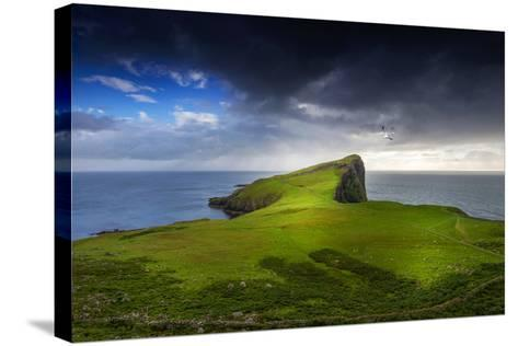 Ground-Philippe Sainte-Laudy-Stretched Canvas Print