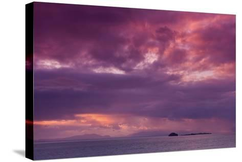 Muted-Philippe Sainte-Laudy-Stretched Canvas Print