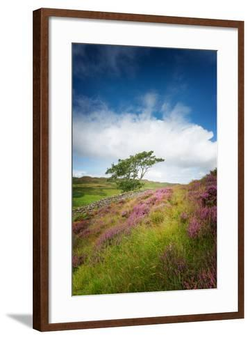 One of These Days-Philippe Sainte-Laudy-Framed Art Print
