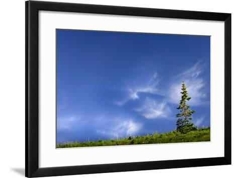Tree Space 2-Ursula Abresch-Framed Art Print
