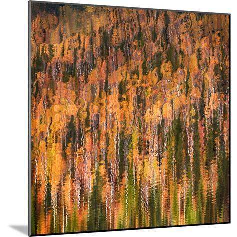 Fall Party-Ursula Abresch-Mounted Photographic Print