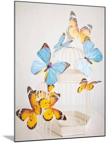 Happy Daydream 2-Susannah Tucker-Mounted Premium Giclee Print