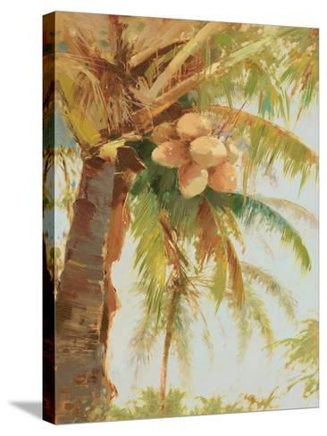 Tropic Palm- Stefano-Stretched Canvas Print