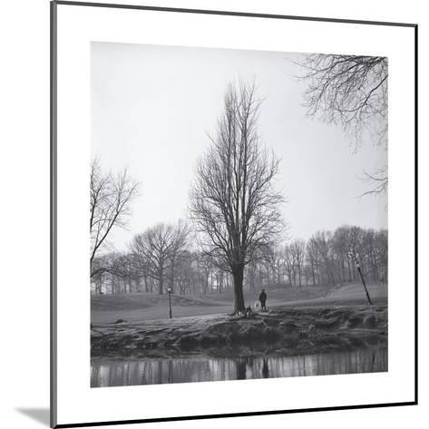 Tree in Winter with Pond-Henri Silberman-Mounted Photographic Print