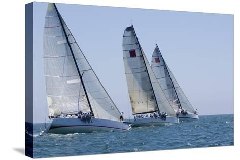 Three Yachts Compete in Team Sailing Event, California--Stretched Canvas Print
