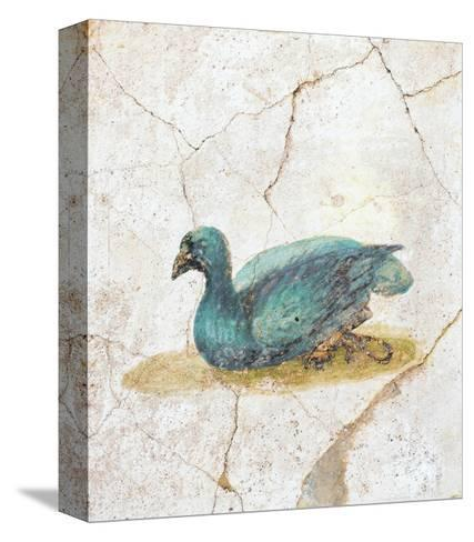 Blue Feathered Duck, C. 10-45--Stretched Canvas Print