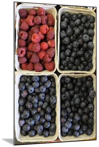 Organic, Blueberries and Raspberries--Mounted Photo