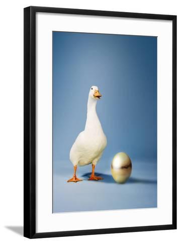 Goose Standing Beside Golden Egg, Studio Shot--Framed Art Print