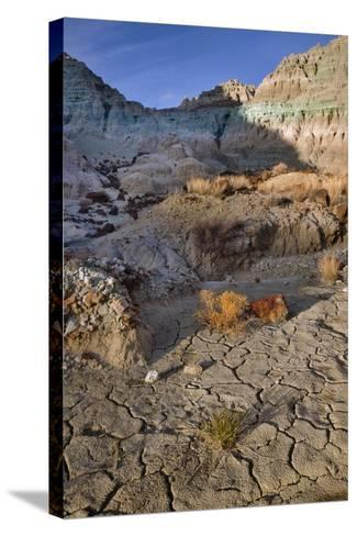 Blue Basin Unit-Steve Terrill-Stretched Canvas Print