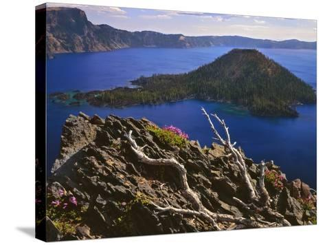 Penstemon Blooms on Cliff Overlooking Wizard Island-Steve Terrill-Stretched Canvas Print