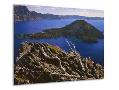Penstemon Blooms on Cliff Overlooking Wizard Island-Steve Terrill-Metal Print