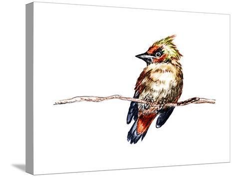 Hand Draw Bird-jim80-Stretched Canvas Print