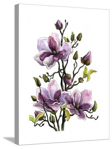 Drawing Branch of a Blossoming Magnolia . Paper, Water Color, H-vodolej-Stretched Canvas Print