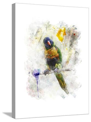 Watercolor Image of Parrot (Rainbow Lorikeet)-SunnyS-Stretched Canvas Print
