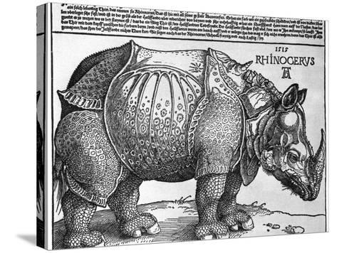 Rhinoceros, Print Given to Maximilian I by the King of Lisbon, 1515-Albrecht Durer-Stretched Canvas Print
